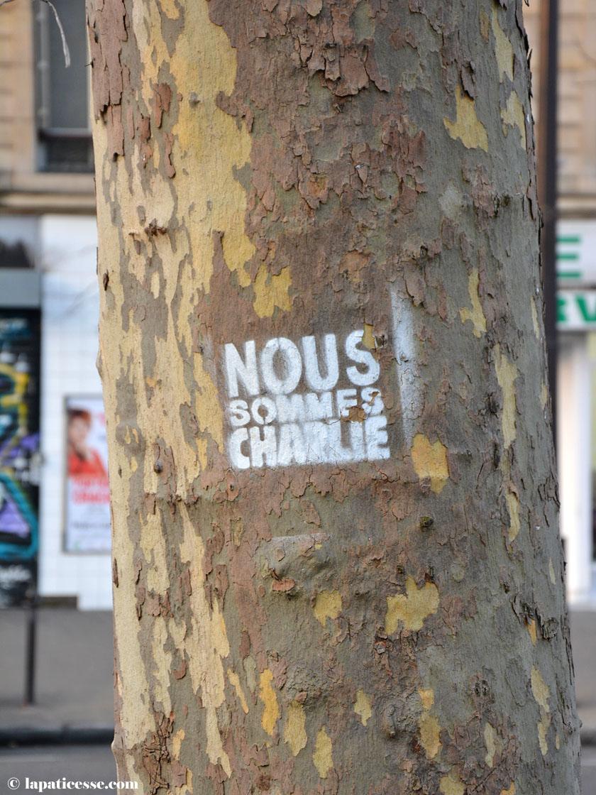 Paris Bataclan Nous Sommes Charlie
