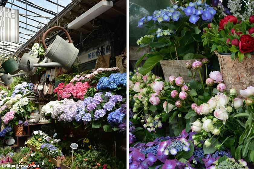 Paris Paris Tipps Markt Marche aux fleurs Blumen-Markt