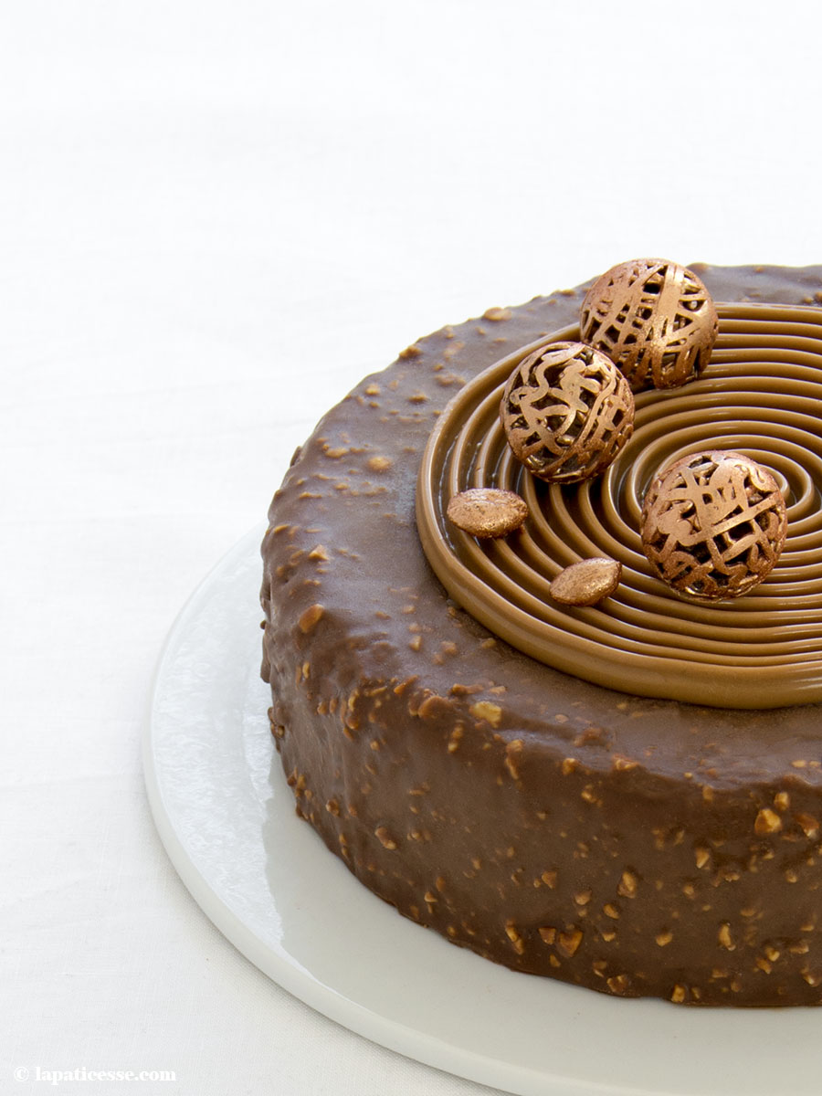 Schoko-Erdnuss-Torte Rezept Entremets très gourmand Mousse au chocolat Titel 1