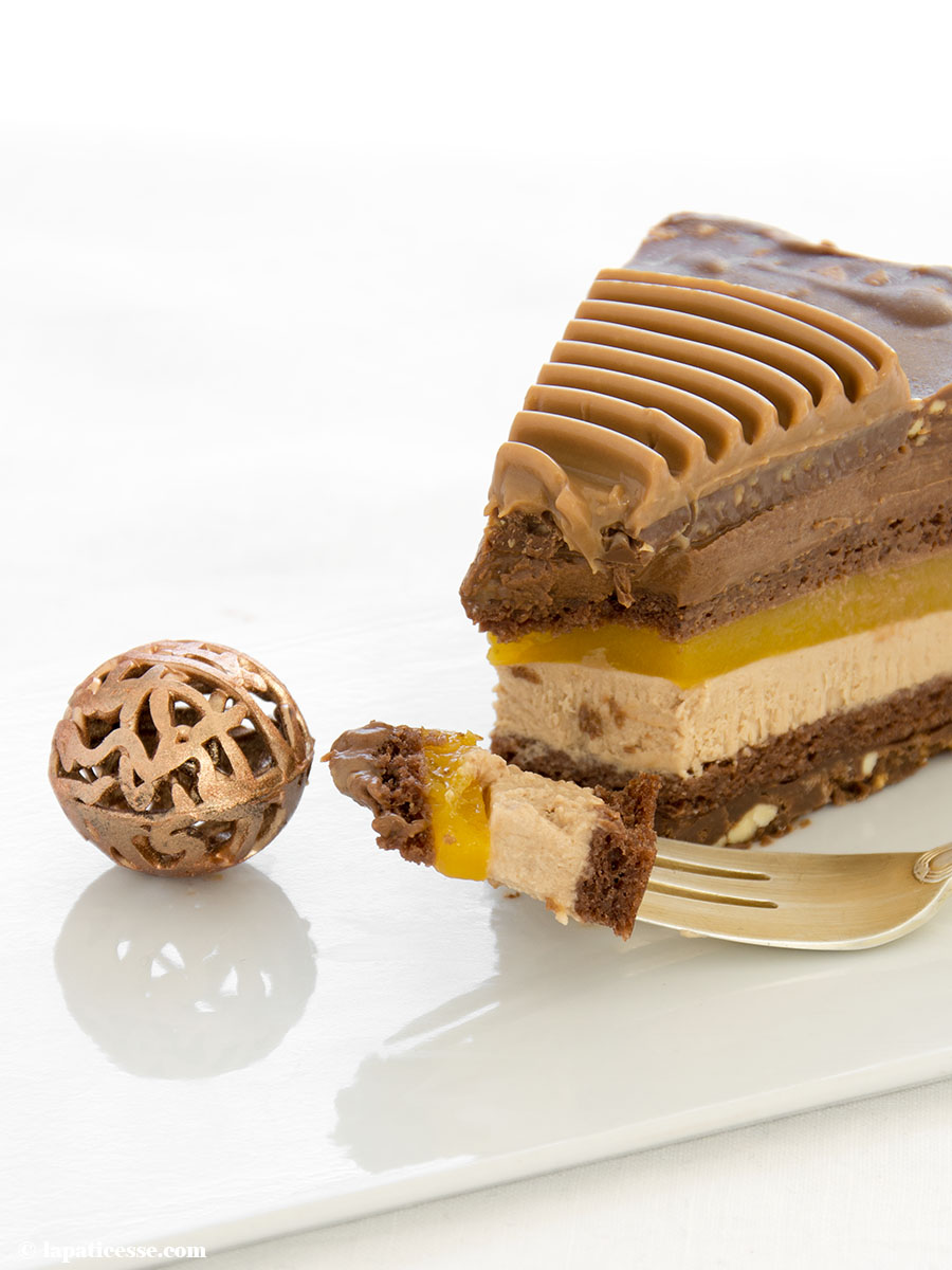Schoko-Erdnuss-Torte Rezept Entremets très gourmand Biscuit Anschnitt 1