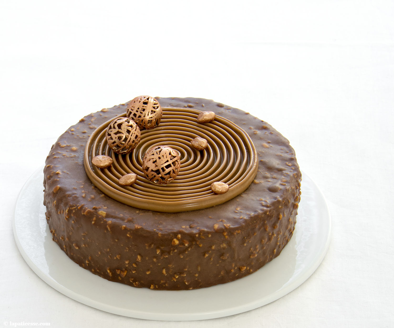 Schoko-Erdnuss-Torte Rezept Entremets très gourmand Mousse au chocolat Caramelia